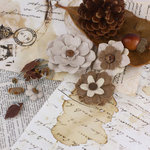 Prima - Laredo Collection - Leather Flower Embellishments - Sacorro