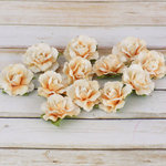 Prima - Encore Collection - Paper Flower Embellishments - Ivory