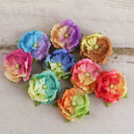 Prima - Overture Collection - Flower Embellishments - Groovy