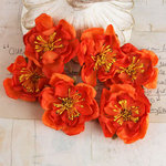 Prima - Bel Canto Collection - Flower Embellishments - Orange