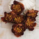 Prima - Bel Canto Collection - Flower Embellishments - Brown