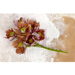Prima - Lifetime Collection - Flower Embellishments - Brown