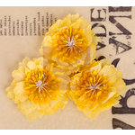 Prima - Lady Bird Collection - Fabric Flower Embellishments - Yellow