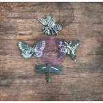 Prima - Resin Collection - Resin Icons in Wood Box - Butterfly