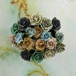 Prima - Seashore Collection - Flower Embellishments - Sealion