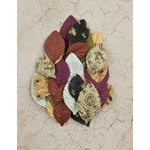 Prima - Time Travelers Memories Collection - Flower Embellishments - Moment in Time