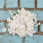 Prima - Rodanthe Collection - Flower Embellishments - Esplande
