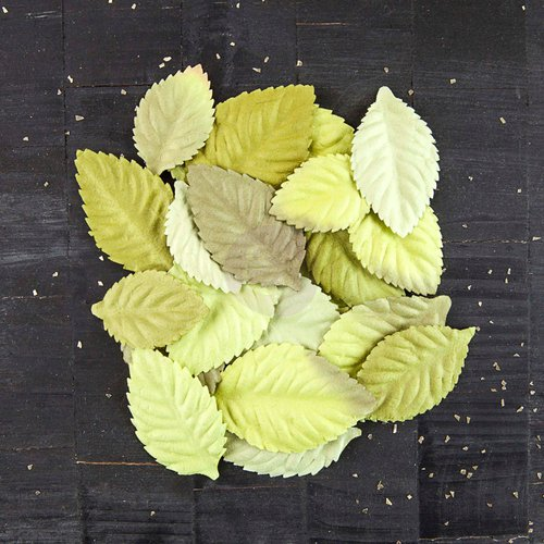 Prima - Bethany Collection - Leaves Embellishments - Greenery