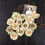 Prima - Coy Collection - Flower Embellishments - Adelle