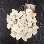 Prima - Coy Collection - Flower Embellishments - Liam