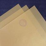 Prima - 8.5 x 11 Vellum Sheets - Gold - 10 Pack