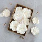 Prima - Flower Embellishments - Box - Purity II