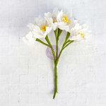 Prima - Flower Bundles Embellishments - White