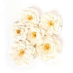 Prima - Flower Embellishments - Ackerly