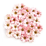 Prima - Amelia Rose Collection - Flower Embellishments - Soft Memories