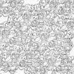 Prima - Paintables - 12 x 12 Paper - Roses