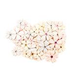 Prima - Lavender Frost Collection - Flower Embellishments - Provincial Lavender