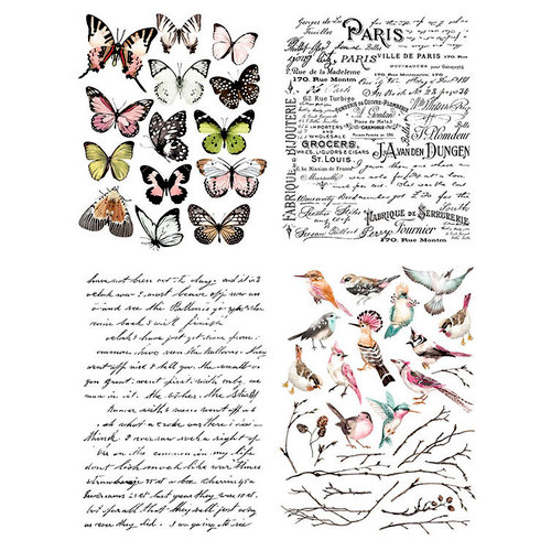 Re-Design - Transfer - Parisian Butterflies