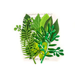 Prima - Leaf Embellishments - Evergreen