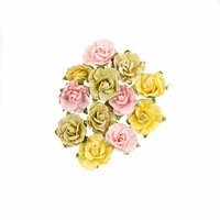 Prima - Fruit Paradise Collection - Flower Embellishments - Sweet Grapefruit