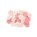 Prima - Fruit Paradise Collection - Flower Embellishments - Fresh Tangerine