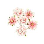 Prima - Golden Coast Collection - Flower Embellishments - Big Sur