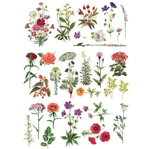 Re-Design - Decor Transfers - Floral Collection