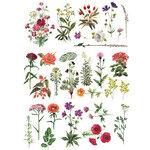 Re-Design - Decor Transfers - Floral Collection