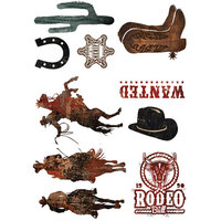 Re-Design - Transfers - Rodeo