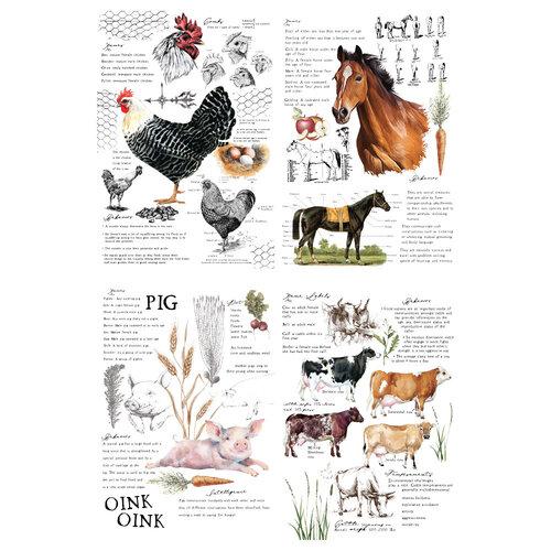Re-Design - Transfers - Farm Life