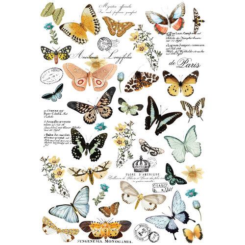 Re-Design - Transfers - Butterfly Dance