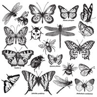 Re-Design - Clear Cling Decor Stamps - Monarch Collection
