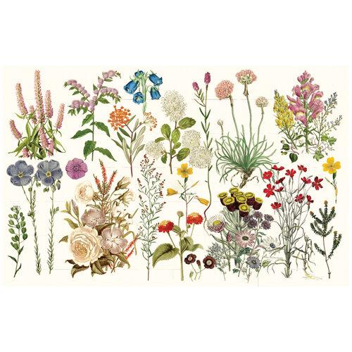 Re-Design - Decoupage Decor Tissue Paper - Wild Herbs