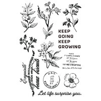 Prima - Nature Lover Collection - Clear Photopolymer Stamps