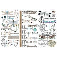 Re-Design - Decor Transfers - Spring Dragonfly