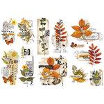 Re-Design - Decor Transfers - Foliage Collector