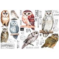 Re-Design - Decor Transfers - Owl