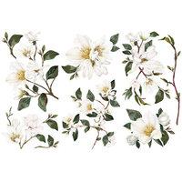 Re-Design - Decor Transfers - White Magnolia