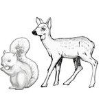 Prima - Shabby Chic Collection - Resin Treasure Embellishments - Woodland Animals