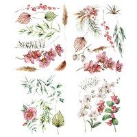 Prima - Sharon Ziv Collection - Transfer - Orchidea