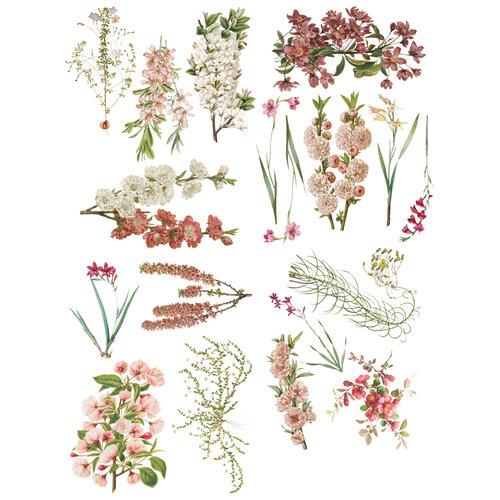Prima - Sharon Ziv Collection - Transfer - Bloom