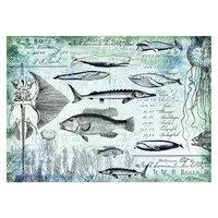 Prima - Art Daily - Decorative Paper - Nautical