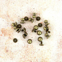 Prima - Memory Hardware - Chantilly Metal Knobs