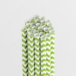 Queen and Company - Perfect Party Collection - Drinking Straws - Chevron - Kiwi Kiss