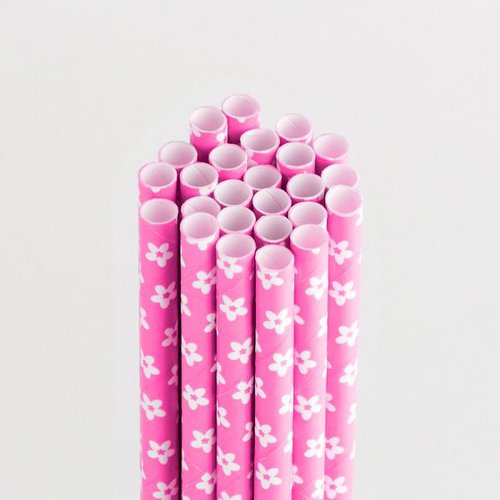 Queen and Company - Perfect Party Collection - Drinking Straws - Floral - Cotton Candy