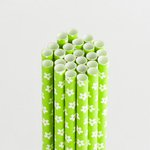 Queen and Company - Perfect Party Collection - Drinking Straws - Floral - Kiwi Kiss