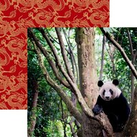 Reminisce - China Collection - 12 x 12 Double Sided Paper - Giant Panda