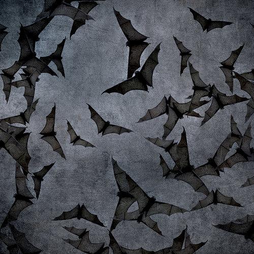 Ella and Viv Paper Company - Dark Hallow Collection - Halloween - 12 x 12 Paper - Gotham Bats
