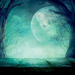 Ella and Viv Paper Company - Dark Hallow Collection - Halloween - 12 x 12 Paper - Harvest Moon