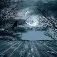 Ella and Viv Paper Company - Dark Hallow Collection - Halloween - 12 x 12 Paper - The Raven